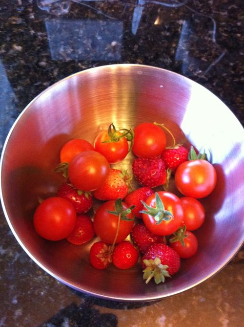 Ah, a bounty from the garden